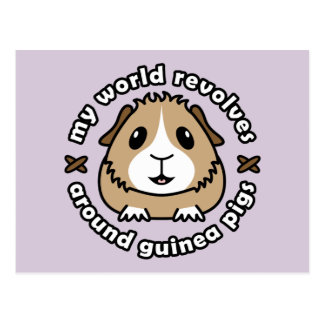 My World Revolves...Guinea Pigs Postcard