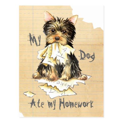 My Yorkie Ate My Homework Post Cards