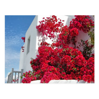 Mykonos houses postcard
