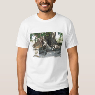 Mysore Fig Tree Roots T Shirts