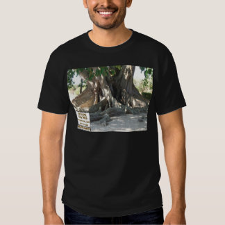 Mysore Fig Tree With Sign Tee Shirt
