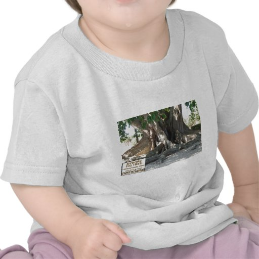 Mysore Fig Tree With Sign T-shirt