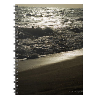 Mysterious sea spiral notebook