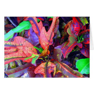 Mystery Foliage Note Cards - G