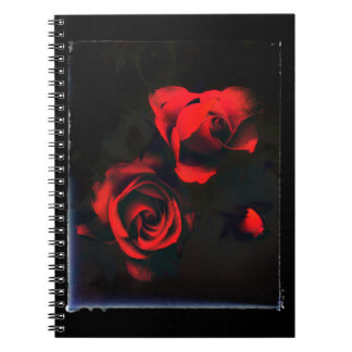 Mystery rose notebooks