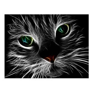 Mystic Cat Postcard