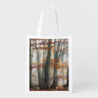 Mystic Foggy Forest in autumn, reuseable