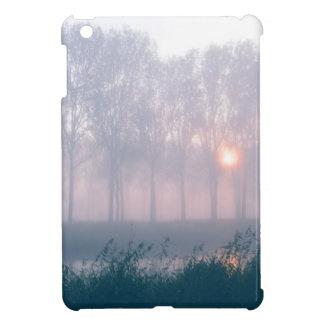 Mystic sunrise iPad mini covers