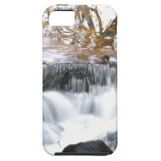 Mystical Babbling brook Case For The iPhone 5