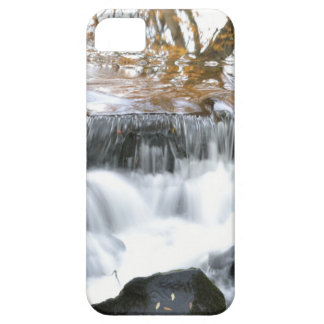 Mystical Babbling brook iPhone 5 Cases