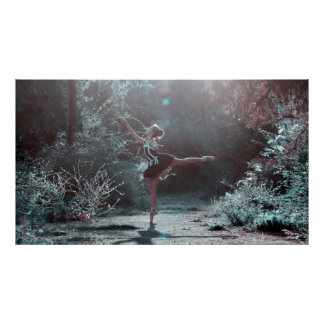 Mystical Ballet Dancer in the Frosted Woods Poster