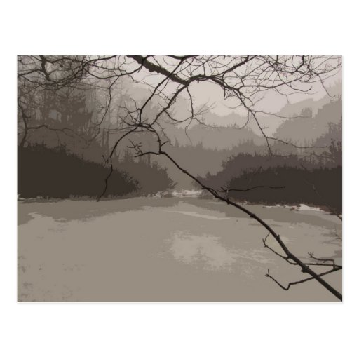 Mystical Fog over Swamp Postcard