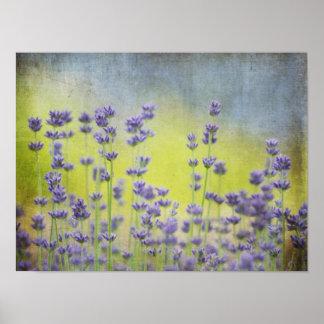 Mystical Lavender Poster
