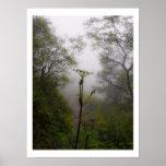 Mystical Morning at Appalachian Trail Poster