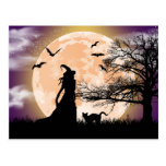 Mystical Witch and Cat Full Moon Postcard