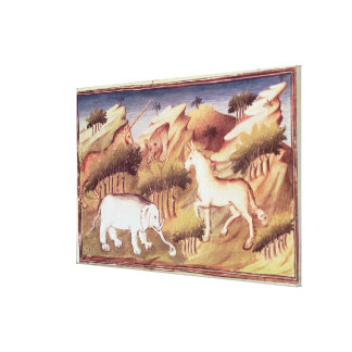 Mythical animals in the wilderness canvas print