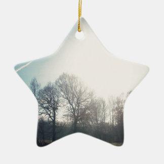 N (2).jpg ceramic star decoration