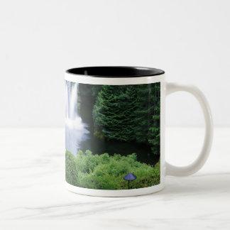 N.A., Canada, British Columbia, Vancouver Two-Tone Coffee Mug