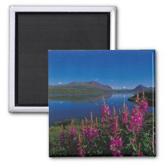 N.A., USA, Alaska, Alaska Range Common Square Magnet