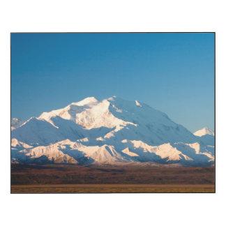 N.A., USA, Alaska.  Mt. McKinley in Denali