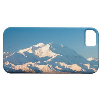 N.A., USA, Alaska.  Mt. McKinley in Denali Barely There iPhone 5 Case