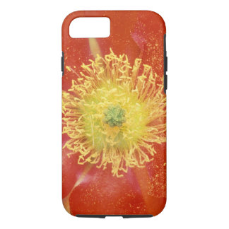 N.A., USA, Arizona, Casa Grande, NM, Desert iPhone 8/7 Case