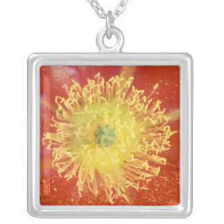 N.A., USA, Arizona, Casa Grande, NM, Desert Silver Plated Necklace