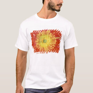 N.A., USA, Arizona, Casa Grande, NM, Desert T-Shirt