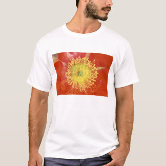 N.A., USA, Arizona, Casa Grande, NM, Desert T-Shirt