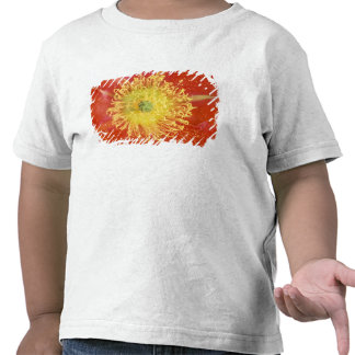 N.A., USA, Arizona, Casa Grande, NM, Desert T Shirts