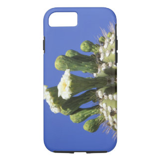 N.A., USA, Arizona, Tucson, Sonora Desert 2 iPhone 8/7 Case