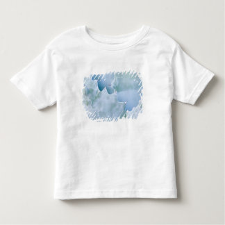 N.A., USA, Arizona, Tucson, Sonora Desert 2 Toddler T-Shirt