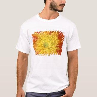 N.A., USA, Arizona, Tucson, Sonora Desert 3 T-Shirt
