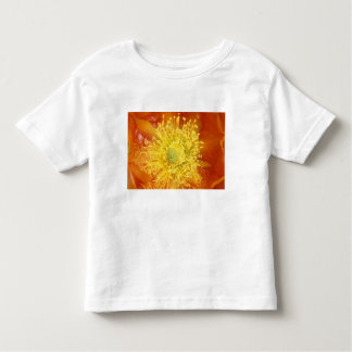 N.A., USA, Arizona, Tucson, Sonora Desert 3 Toddler T-Shirt