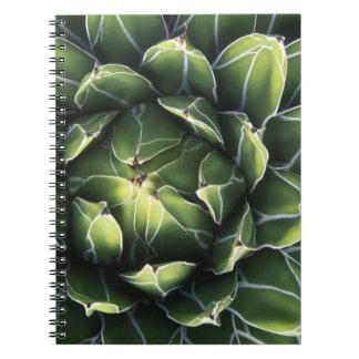 N.A., USA, Arizona, Tucson, Sonora Desert Spiral Notebook