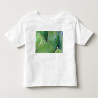 N.A., USA, Arizona, Tucson, Sonora Desert Toddler T-Shirt