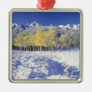 N.A., USA, Colorado, San Juan Mts Fresh snow Silver-Colored Square Decoration