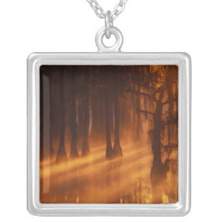 N.A., USA, Georgia, George Smith State Park. Square Pendant Necklace