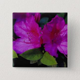 N.A. USA, Georgia, Savannah. Azalea in bloom. 15 Cm Square Badge