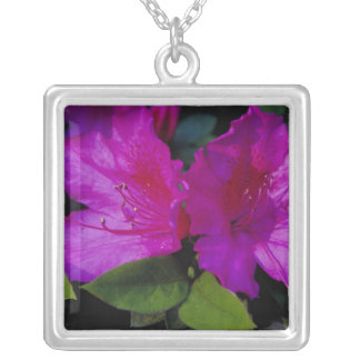 N.A. USA, Georgia, Savannah. Azalea in bloom. Silver Plated Necklace