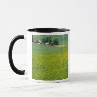 N.A., USA, Idaho, Latah County, near Genesee. Mug