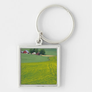 N.A., USA, Idaho, Latah County, near Genesee. Silver-Colored Square Key Ring