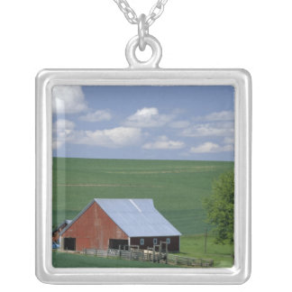 N.A., USA, Idaho, Latah county near Genesee. Silver Plated Necklace