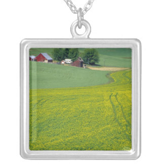N.A., USA, Idaho, Latah County, near Genesee. Silver Plated Necklace