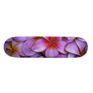 N.A., USA, Maui, Hawaii. Pink Plumeria blossoms. 19.7 Cm Skateboard Deck