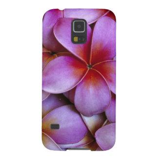 N.A., USA, Maui, Hawaii. Pink Plumeria blossoms. Galaxy S5 Cover
