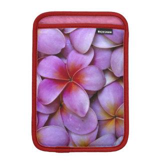 N.A., USA, Maui, Hawaii. Pink Plumeria blossoms. iPad Mini Sleeve