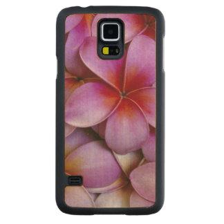 N.A., USA, Maui, Hawaii. Pink Plumeria blossoms. Maple Galaxy S5 Slim Case