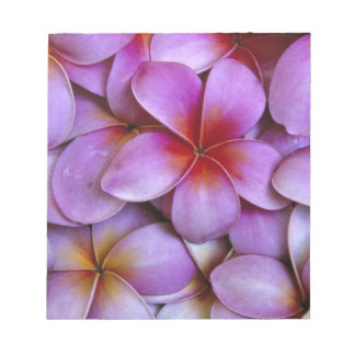 N.A., USA, Maui, Hawaii. Pink Plumeria blossoms. Notepad