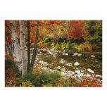 N.A., USA, New Hampshire, White Mountains,